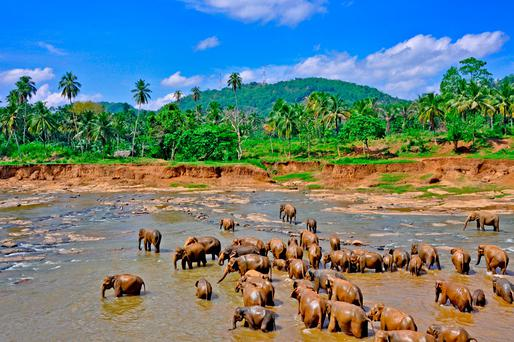 Sri Lanka: Beyond the beaches
