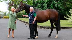 The Duchess Of Cornwall with Invincible Spirit and Daffer Kelly at the National Stud in May. Photo: Caroline Norris