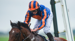 Ryan Moore will be hoping to partner Churchill to another success today. Photo: Sportsfile