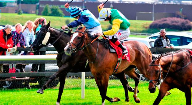 Athenry Boy, with Wayne Lordan up (left), on the way to winning the Terry Cunningham Memorial Handicap. Photo credit: PA Wire