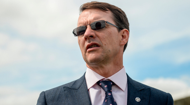 Aidan O'Brien was happy to run both runner-up Found and the third, Minding, in last year's renewal, when he was lacking a top-class colt in the Group One. Photo by Cody Glenn/Sportsfile
