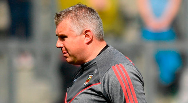 Mayo manager Stephen Rochford. Photo: Sportsfile