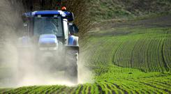 The agri-food sector is particularly exposed to the dangers of Brexit