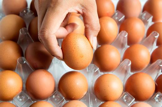 The egg scandal seems to have started in Holland. Stock picture