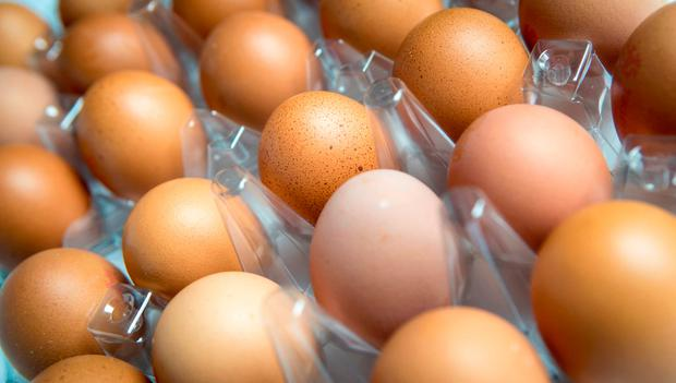 Irish Farmers' Association (IFA) poultry committee chairman Nigel Renaghan has reassured consumers that Irish eggs are unaffected and 100pc safe. (File pic: PA)
