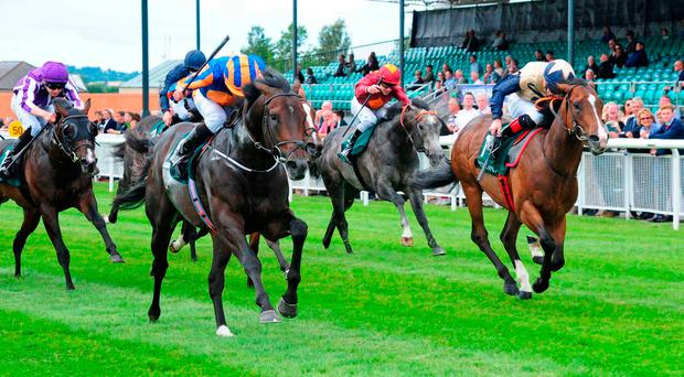 Ryan Moore drives Sioux Nation to victory in yesterday's Phoenix Stakes. Photo credit: PA Wire
