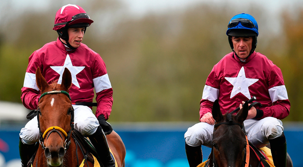 Bryan Cooper needs to follow the example of Davy Russell (right) in how to get his career back on track after a setback. Photo by Seb Daly/Sportsfile
