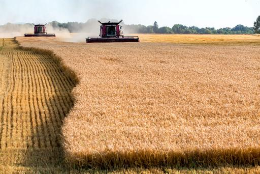 US wheat plantings for 2017 fell to the lowest in a century.