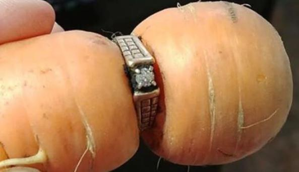 Mary Grams, 84, had lost her beloved ring in 2004 while she was in the garden, and thought she would never see it again.