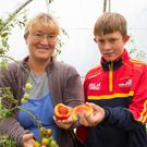 Liya Zagaynova and her son Dmitry Murphy Zagaynova with her unusual tomato grown in her greenhouse at Great Island, Co.Wexford. Photo:Mary Browne