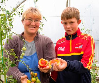 Liya Zagaynova and her son Dmitry Murphy Zagaynova with the unusual tomato grown in her greenhouse at Great Island, Co Wexford. Photo: Mary Browne