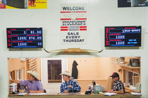 Signs hang above the auction block as a cattle auction takes place at Stockmen's Livestock Exchange in Dickinson, North Dakota, U.S. August 17, 2017. Many ranchers in the area have sold off more animals than usual to combat high feed costs after a summer-long drought. Picture taken August 17, 2017. REUTERS/Andrew Cullen