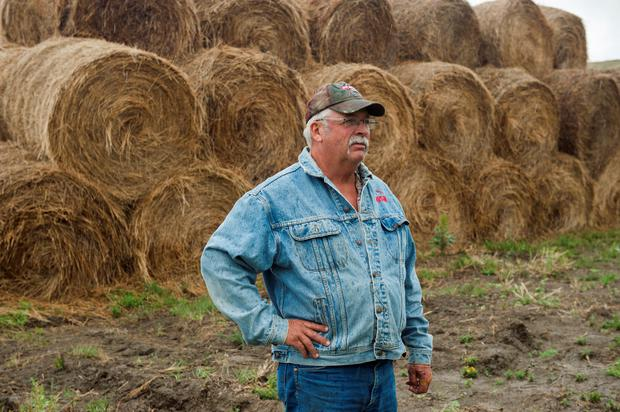 Rancher Ralph Bieber stands with hay he cut from land that had been set aside for environmental conservation under a special exception due to a summer-long drought near Beulah, North Dakota, U.S. August 15, 2017. Picture taken August 15, 2017. REUTERS/Andrew Cullen