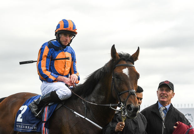 Order of St. George, with Ryan Moore up, on their way back to the parade ring after winning the Comer Group International Irish St Leger Trial Stakes during the Paddy Power Raceday at the Curragh Racecourse in Kildare. Photo by Eóin Noonan/Sportsfile