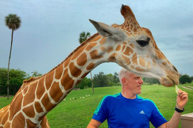 Lettuce for lunch... David gets up close to his new four-legged friend Sophie in Busch Gardens