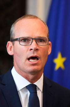 PRESSURED: Foreign Affairs Minister Simon Coveney. Photo: Leah Farrell/RollingNews.ie