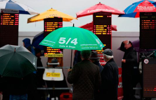 Racegoers study the bookies odds as the weather worsens at Curragh Racecourse. Photo: PA