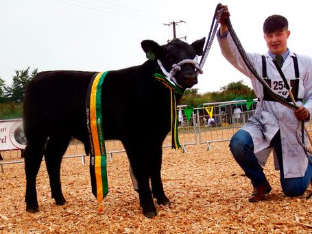 Millbawn Prizeman, the Connaught provincial trophy winner at Mohill Show with Conor Craig from Coolarty, Edgeworthstown, Co Longford. Photo: Edward Dudley