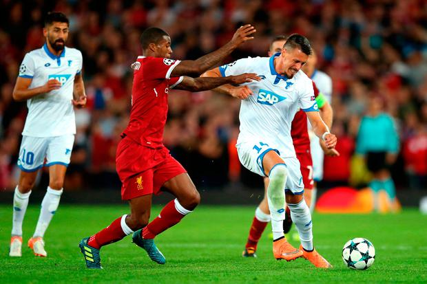 Georginio Wijnaldum of Liverpool and Sandro Wagner of Hoffenheim battle for possession. Photo: Getty Images
