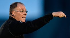 Limerick manager Neil McDonald. Photo: Diarmuid Greene/Sportsfile