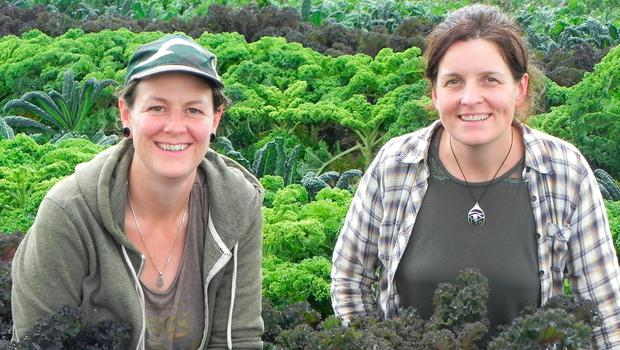 Jenny Watkins and Janet Power on their three acre organic farm near Bunclody, Co Wexford