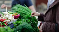 Organic food is increasingly in demand
