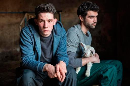 New lease of life: Johnny Saxby (Josh O'Connor) numbs his daily frustrations with binge drinking and casual sex, until the arrival of a Romanian migrant worker Gheorghe Ionescu (Alec Secareanu) sets him on a new path
