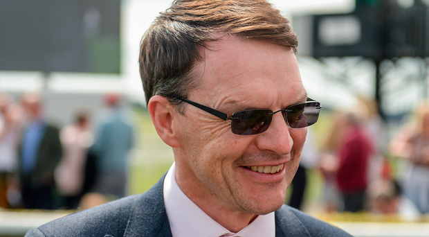 Aidan O'Brien, who looks liable to win all around him over the two days. Photo by Cody Glenn/Sportsfile