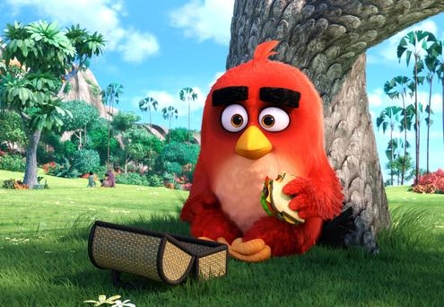 A scene from the 2016 Angry Birds movie, which helped revive the brand