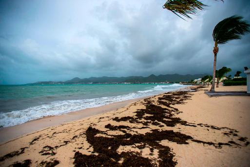 A picture taken on September 5, 2017 shows a view of the Baie Nettle beach in Marigot, with the wind blowing ahead of the arrival of Hurricane Irma.