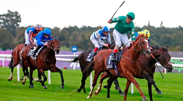 Decorated Knight ridden by Andrea Atzeni wins the The QIPCO Irish Champion Stakes during day one of the Longines Irish Champions Weekend at Leopardstown Racecourse. PRESS ASSOCIATION Photo. Picture date: Saturday September 9, 2017. See PA story RACING Leopardstown. Photo credit should read: Niall Carson/PA Wire