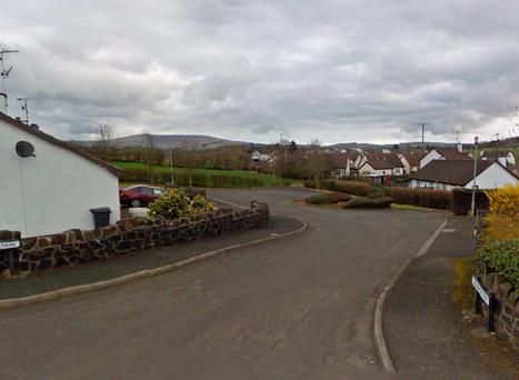 The incident happened on Glenravel Road in Ballymena