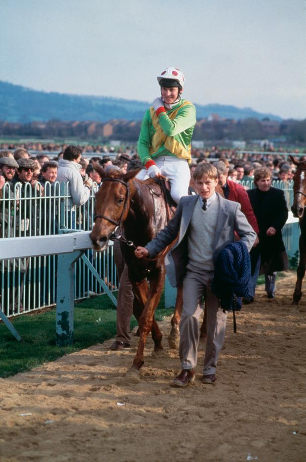 Bregawn, which later won at Listowel. Photo by Bob Thomas/Getty Images