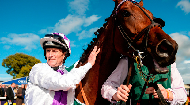 Kevin Manning after winning the Goffs Vincent O'Brien National Stakes during the Longines Irish Champions Weekend at the Curragh. Photo by Cody Glenn/Sportsfile