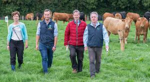 Meadhbh Freaney from Teagasc Clonmel; vet Tommy Heffernan; Joe Hand, Teagasc Thurles and Terry Carroll, Teagasc Kilkenny, at the suckler and beef event in Kildalton Agricutural College. Photo: O'Gorman Photography.