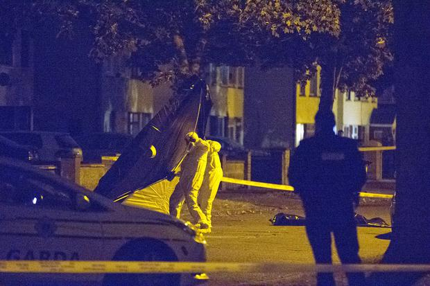 Gardai at the murder scene. Photo: Arthur Carron