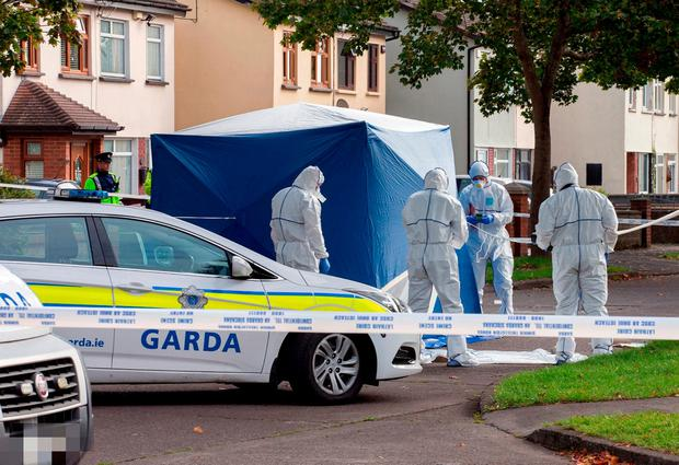 Garda forensic officers examine the scene of the shooting of Darragh Nugent at Wheatfield Avenue, Clondalkin.