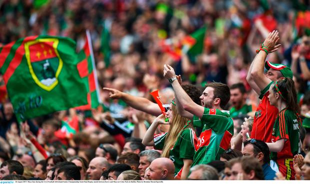 Mayo fans during the victory over Kerry