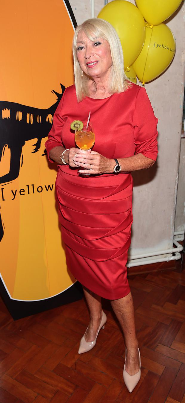 Anne Doyle at the Yellow Tail Wine tasting event at Drury Buildings,Dublin. Pic :Brian McEvoy