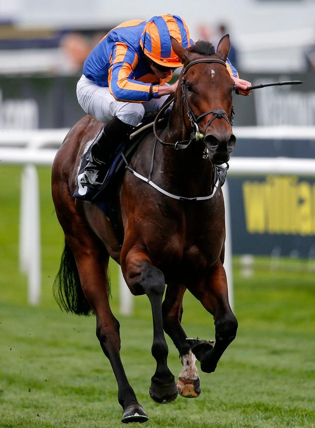Music Box, with Ryan Moore up, on the way to winning the Sceptre Stakes at Doncaster. Photo by Alan Crowhurst/Getty Images