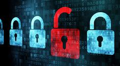 Cybercrime is now the third most common crime reported by small businesses in Ireland after burglary and vandalism, according to the ISME survey.