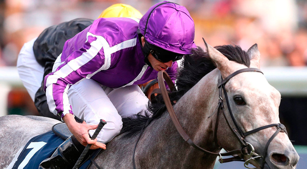 Ryan Moore steers Capri to victory at Doncaster. Photo: PA Wire