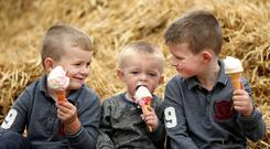 Brothers Andrew (5), Michael (2) and Paddy O'Brien (7) take a break at the Ploughing Championships. Picture; Gerry Mooney