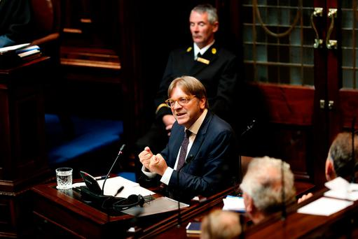 European Parliament Brexit co-ordinator Guy Verhofstadt speaking in the Dáil yesterday. Photo: Maxwells