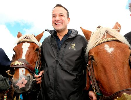 Taoiseach Leo Varadkar tries his hand at horse-drawn ploughing at the National Ploughing Championships with horses Jack and Jill. Photo: Gerry Mooney.