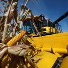 FILE PHOTO: A combine machine harvests corn in a field in Minooka, Illinois, September 24, 2014. REUTERS/Jim Young/File Photo