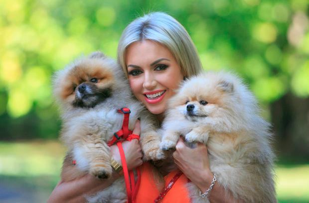 Rosanna Davison with her dogs Ted and Leo at St Stephen's Green in Dublin yesterday. Photo: Gareth Chaney/Collins