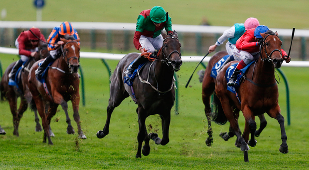Capulet (right, with Frankie Dettori up), on the way to winning The Shadwell Rockfel Stakes at Newmarket yesterday. Photo: Getty Images