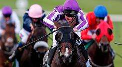 Seamie Heffernan riding US Navy Flag (C, purple/white) win TheJuddmonte Middle Park Stakes at Newmarket racecourse