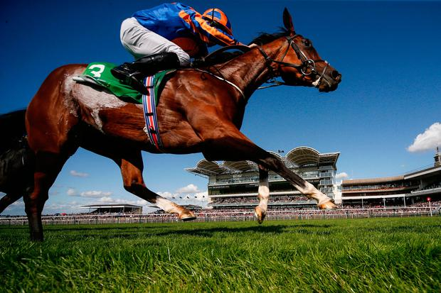 Clemmie, with Ryan Moore up, on the way to winning The Juddmonte Cheveley Park Stakes at Newmarket. Photo by Alan Crowhurst/Getty Images